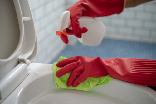 Close up woman using cleaning spray clean a toilet with red gloves