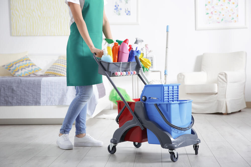 Woman wearing green apron with cleaning equipment at home