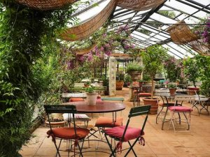 Greenhouse Themed Cafe