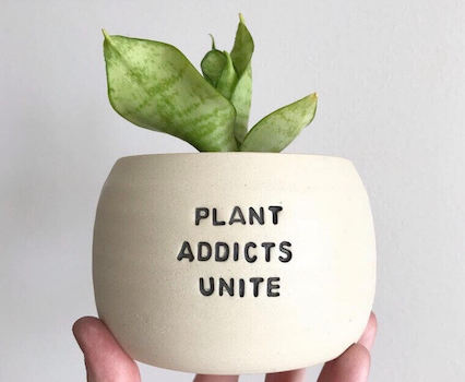 plant addicts unite printed on a flower pot