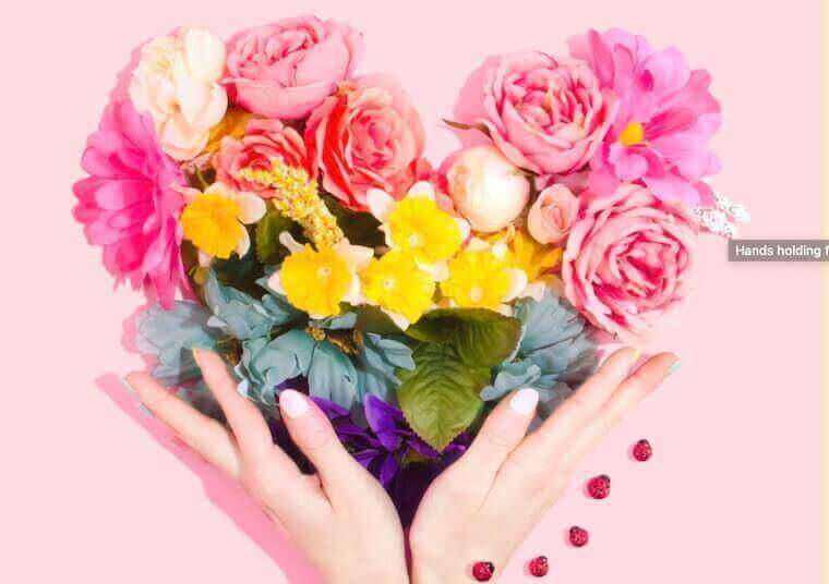 hands holding flowers shaped as a heart in pink background, love for plants image