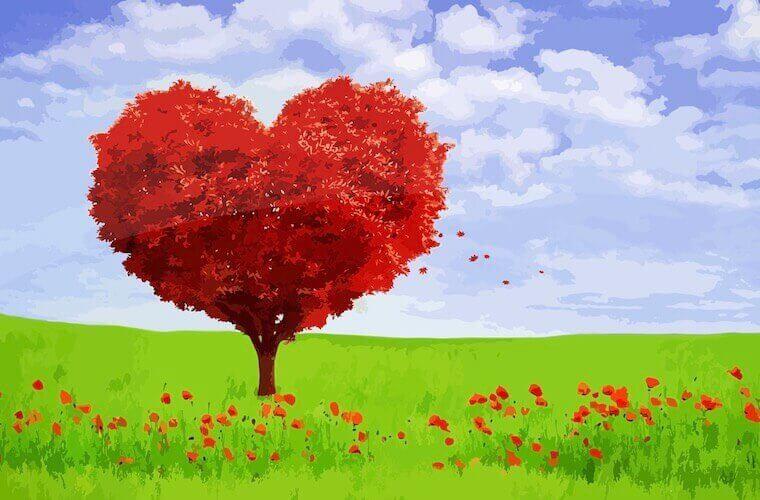 heart-shaped tree in a green field garden love image