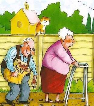 Old people gardening together with hilarious old man planting bulbs while old woman using cane to make holes for planting