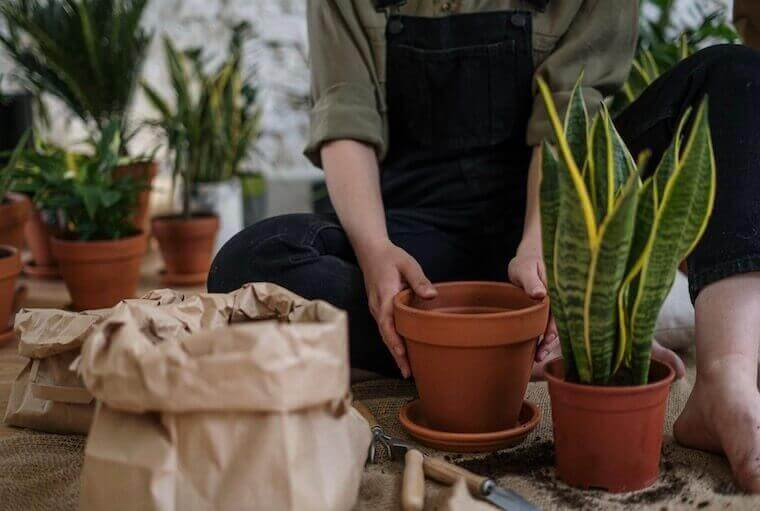 Person in a gray t-shirt and blue denim jeans sitting on brown clay pot