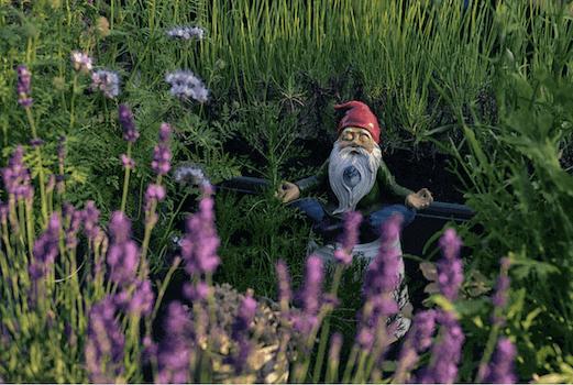 dwarf statue meditating in a garden