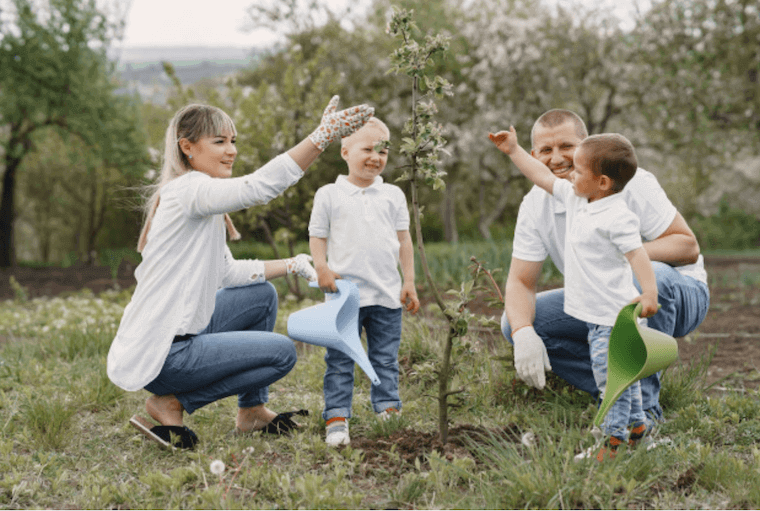family with two little sons planting a tree in a garden