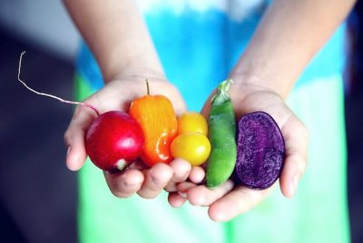 hands holding red, orange, yellow, green, and violet assorted vegetables
