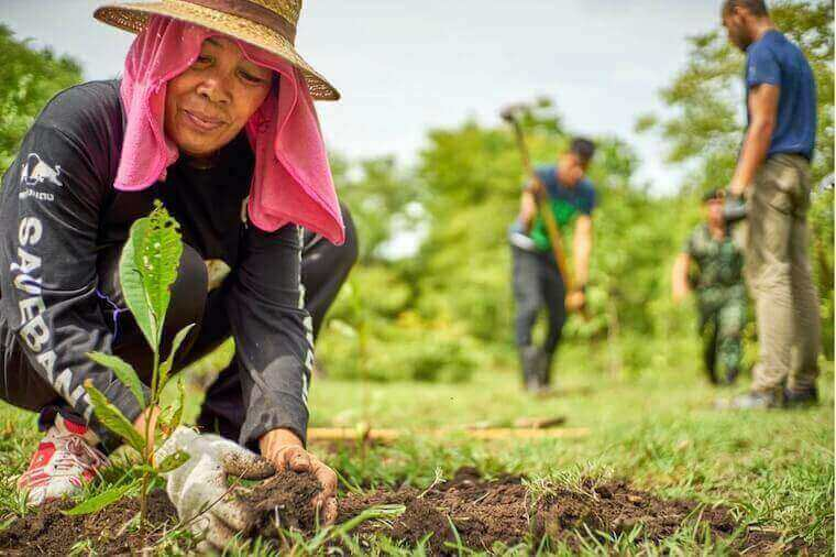 woman planting while people till soil behind her